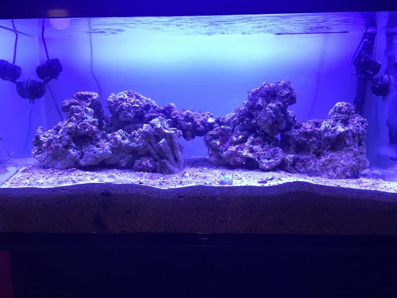 Aqua 240 litres 645d4b10
