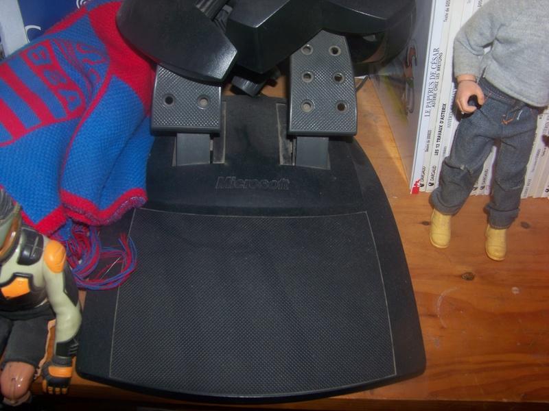 volent et pedalle pour ordinateur microsoft. 100_2044