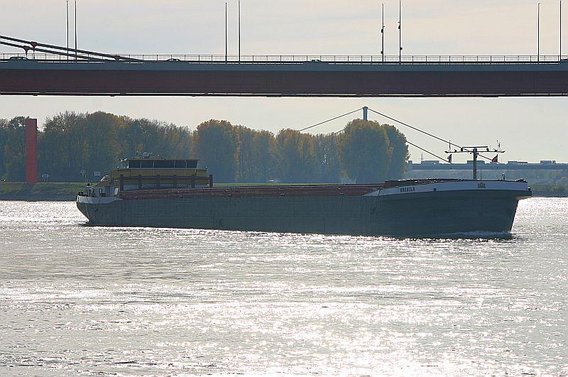 Kleiner Rheinbummel in Duisburg-Ruhrort und Umgebung - Sammelbeitrag - Seite 7 Img_8636