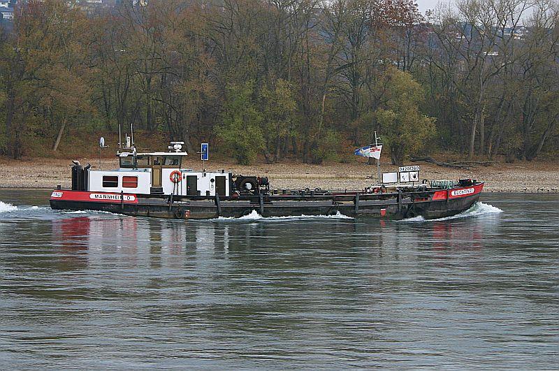 Kleiner Rheinbummel am Mittelrhein - Koblenz bis Bonn - Sammelbeitrag Img_8719