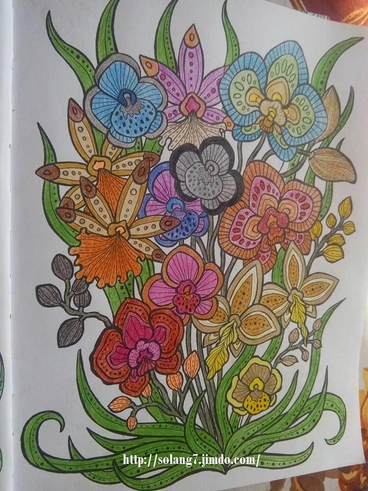 Dessin et coloriage anti-stress 13516417