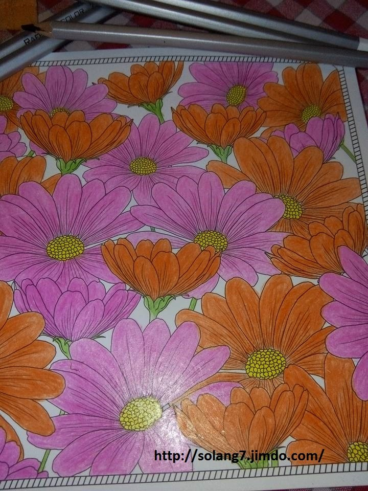 Dessin et coloriage anti-stress 13533213