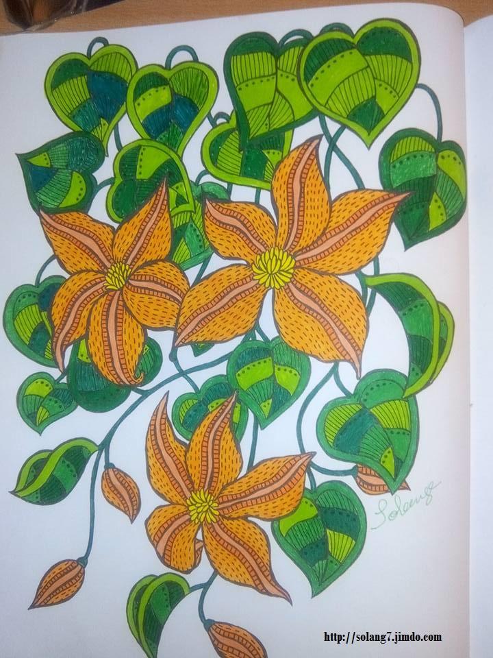 Dessin et coloriage anti-stress 13872712