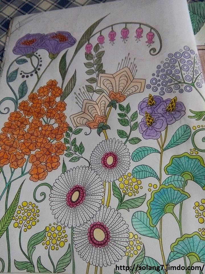 Dessin et coloriage anti-stress 14544215