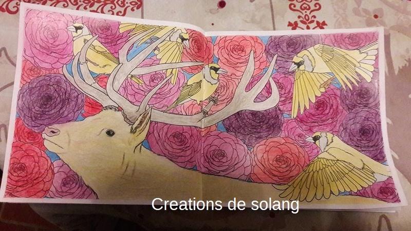 Dessin et coloriage anti-stress 15941412