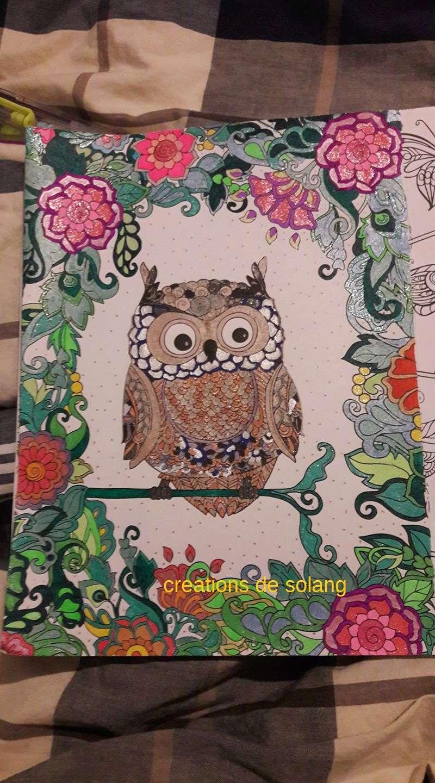 Dessin et coloriage anti-stress 16300015