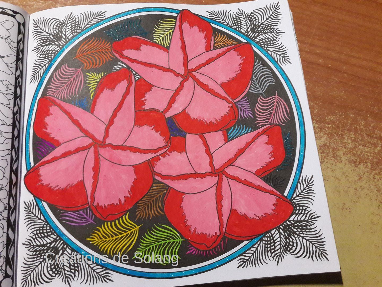 Dessin et coloriage anti-stress 31445113