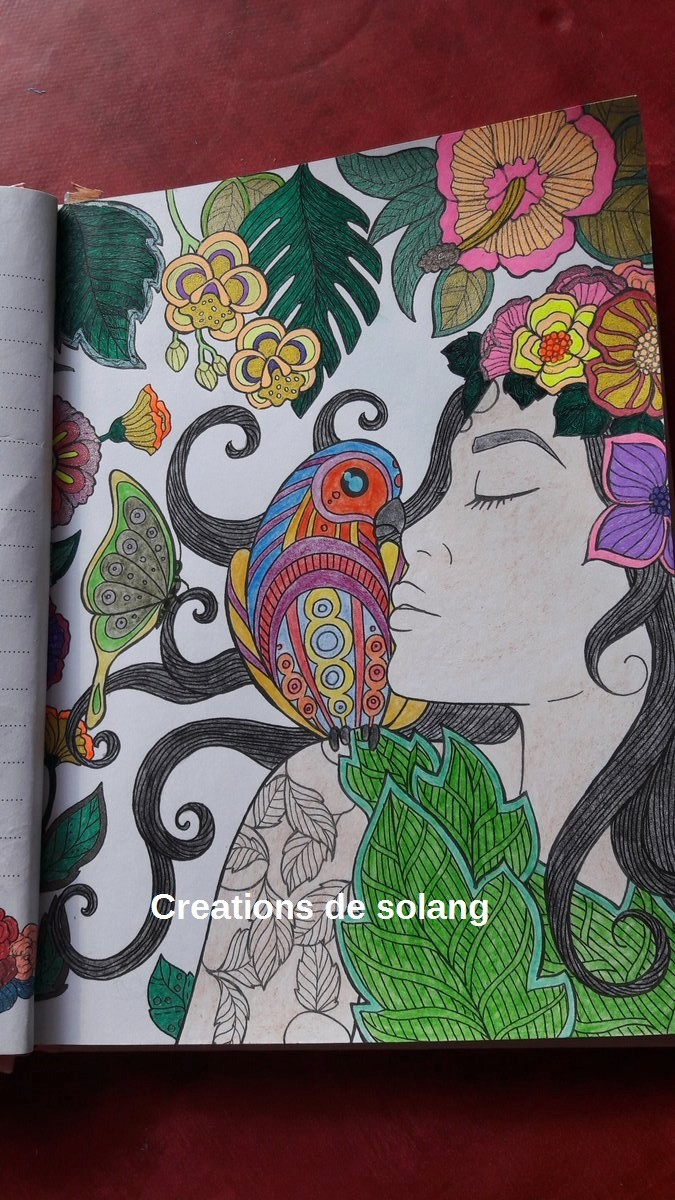 Dessin et coloriage anti-stress C9yol411