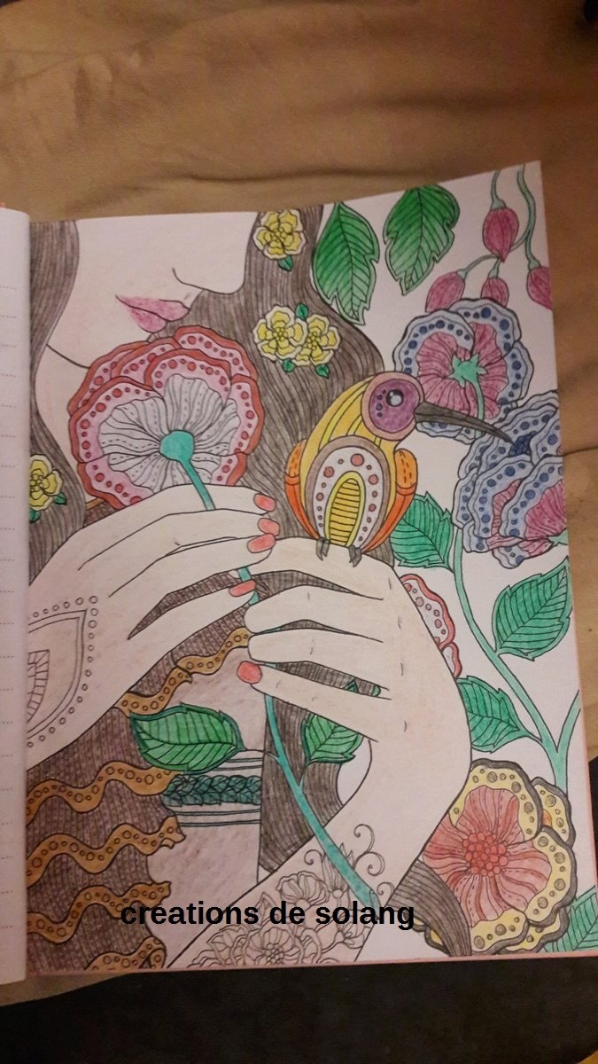 Dessin et coloriage anti-stress C_dhkw12
