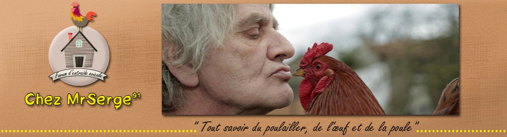 Chez MrSerge91 & Vos Poules