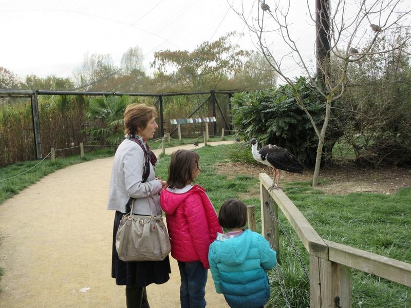 Le Parc aux Oiseaux de Villard les Dombes 02010