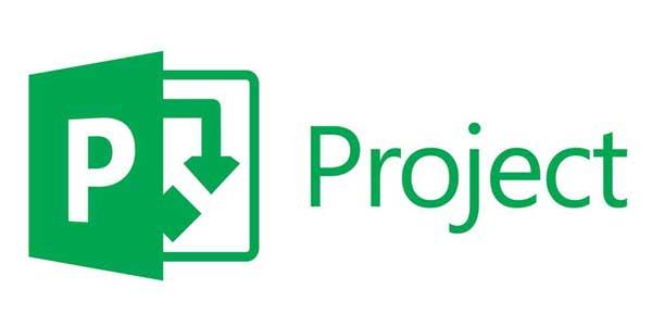curso de MS project