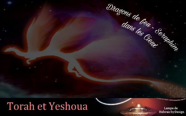 Dragons brûlants-Seraphim dans les Cieux Picsar33