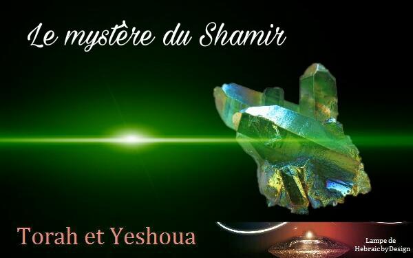 Le mystère du Shamir  Picsar45