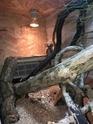 La construction de notre Terrarium pour Pogona Henrylawsoni  - Page 2 Img_0312