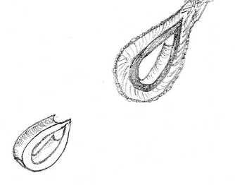 La Black Pearl di Giulia - Pagina 2 Img06110