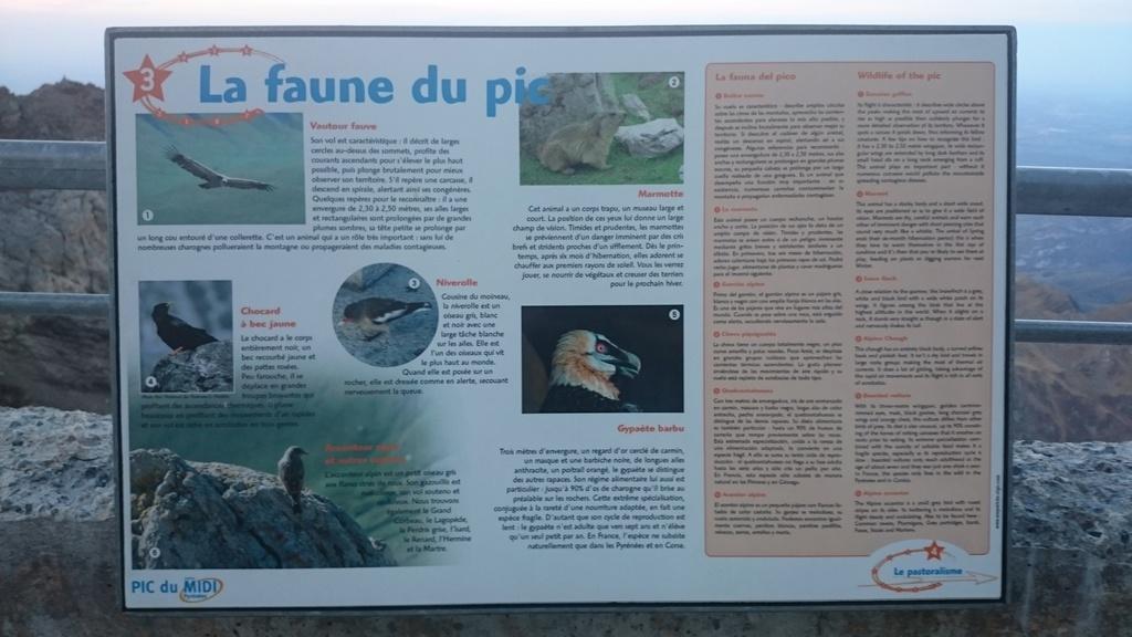 Quatrième mission au Pic du Midi, T60, semaine 42 - Page 2 Dsc_0139