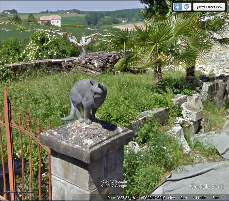 Les chats de La Romieu - Gers - France Mmm10