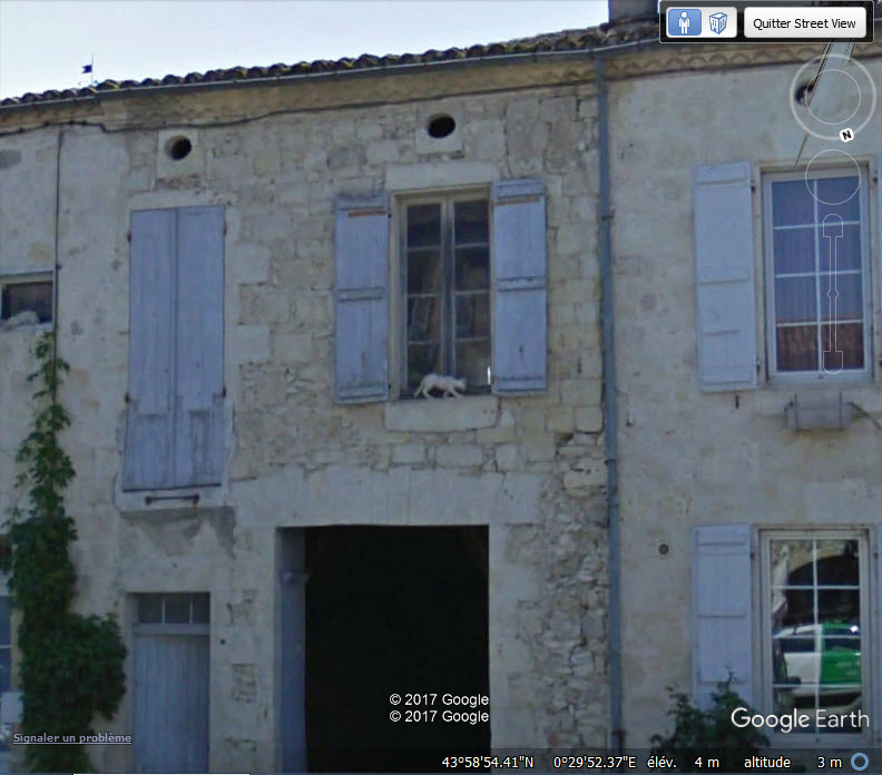Les chats de La Romieu - Gers - France Www115