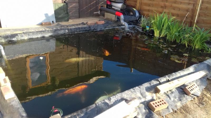 bassin de carperic62 20170510