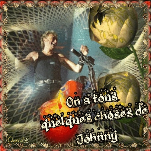 Johnny Hallyday 72307810