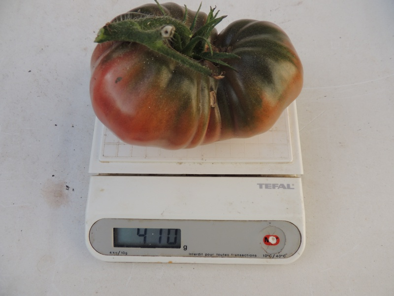 Tomates - Page 36 68085710