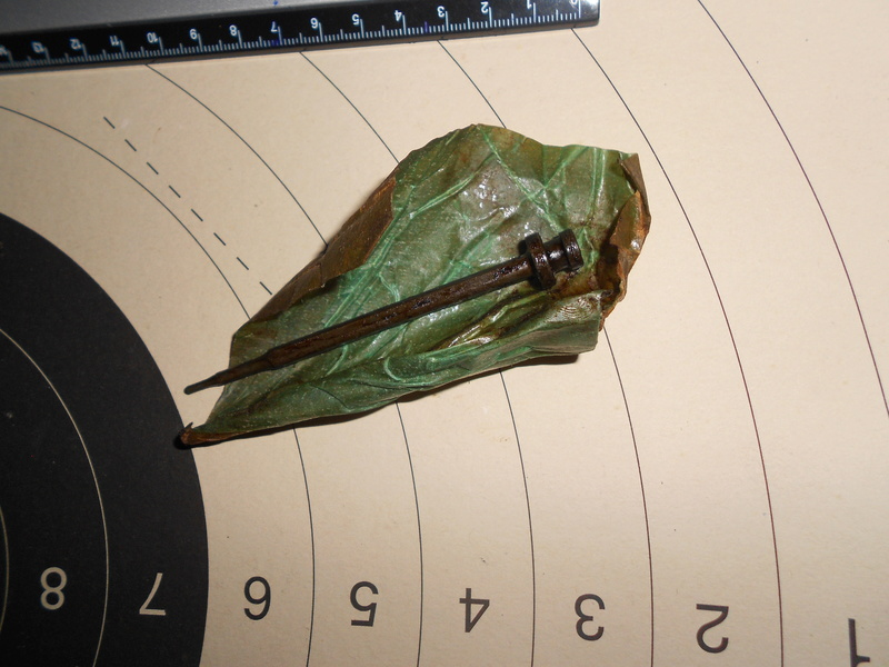 identification percuteur Dscn3216