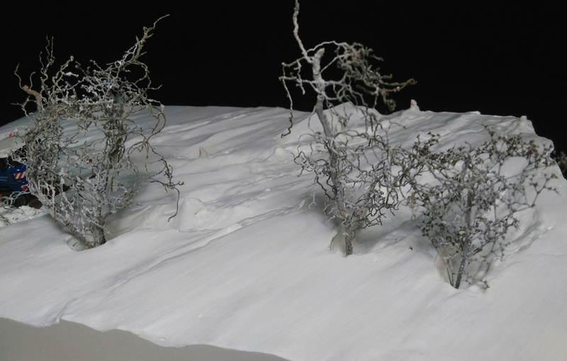 Diorama Schneesturm  Img_2069
