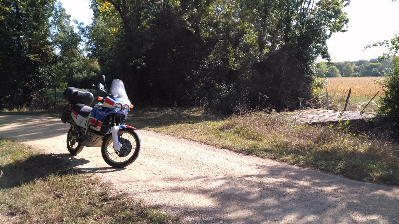 Les aventures du Petit Faune Img_2010