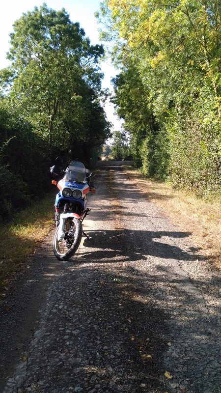 Les aventures du Petit Faune Img_2012