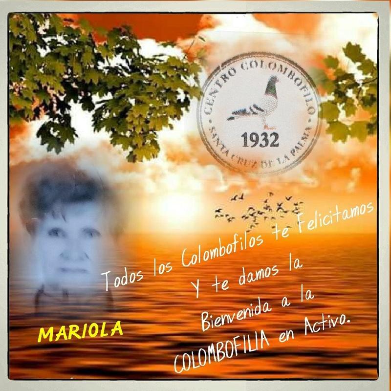 MENSAJERAS EN CANARIAS 24837210