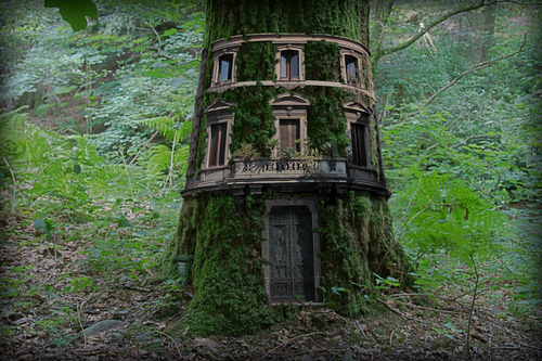 An old place, out in the woods beyond the city - Page 3 Tree_h12
