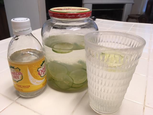 Cucumbers - Page 2 Cucumb12