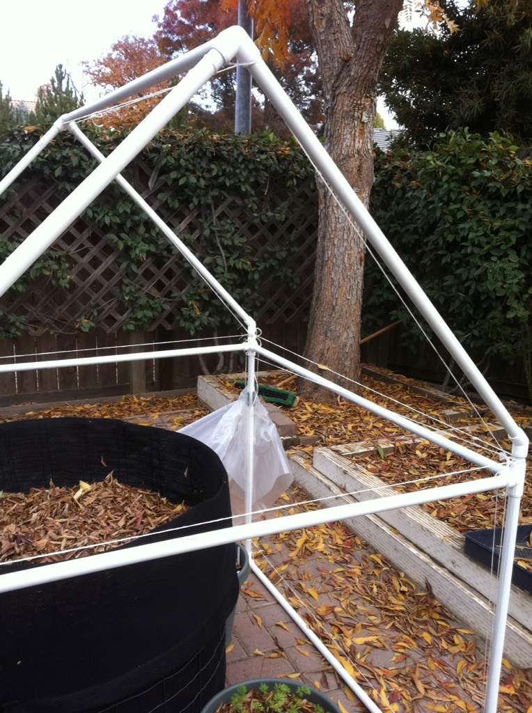 cold frame gardening question Hot_ho15