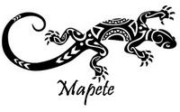 Mapete: Royaume de Mapete - Page 13 Logo_m13