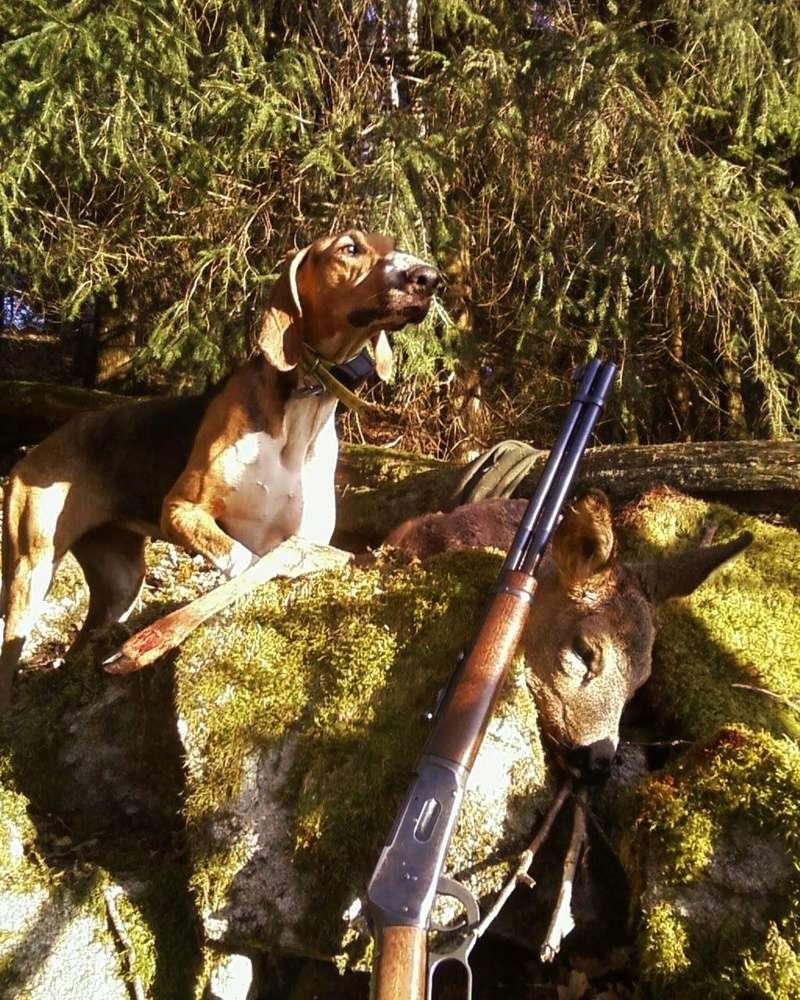 Besoin de vos avis pour une Winchester 1894 19_dyc10
