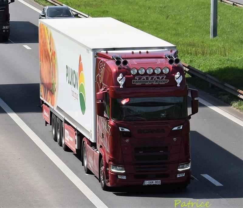 TVX  Transport Vanhooren Xavier  (Kortemark) 20420