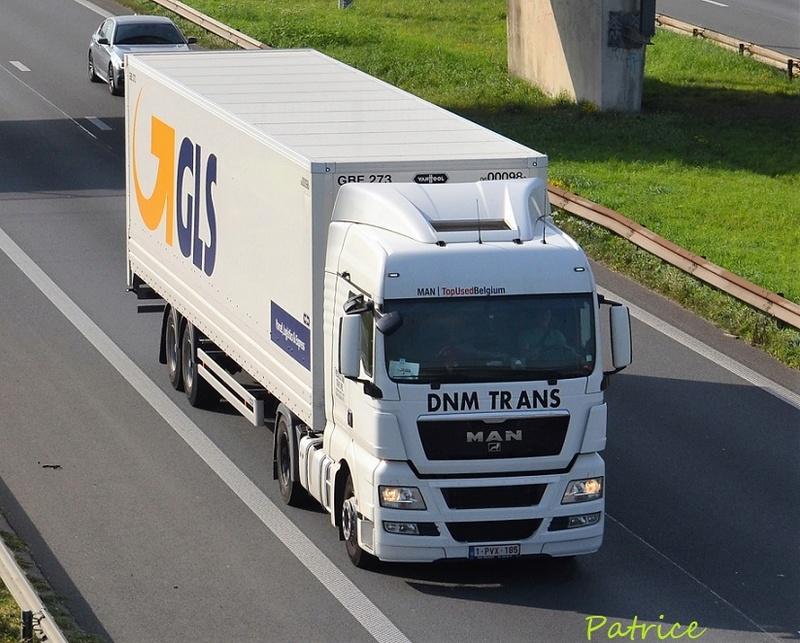 DNM  Trans 22312