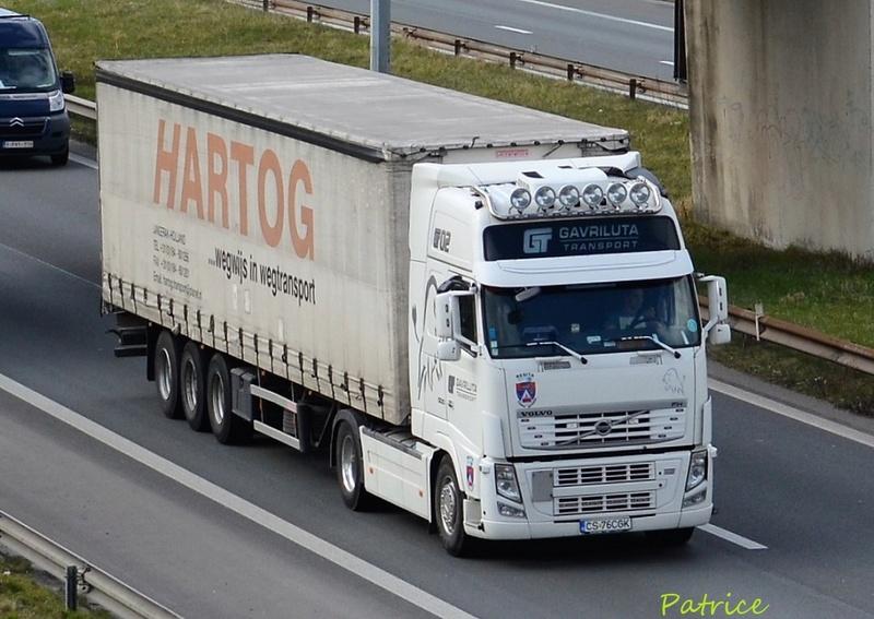 Gavriluta Transport  (Resita) 2619