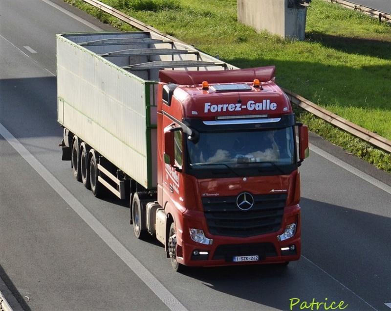 Forrez-Galle (Ardooie) 32410