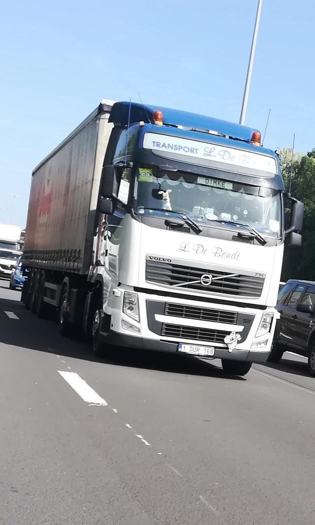 L. De Bondt & Co. (Puurs) 49cf9012