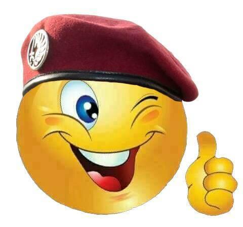 La section morbihannaise de l'Union nationale des parachutistes a tenu son assemblée générale à Saint-Avé. A cette occasion, l'annonce de l'organisation à Vannes les 1er et 2 juin 2018 du congrès départemental a été faite. Près de 1 000 participants sont  Salut_10