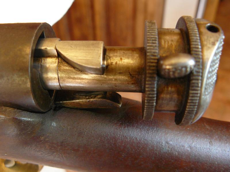 Essais, tirs, et comparatif de fusils réglementaires à cartouche poudre noire - Page 3 P1070910