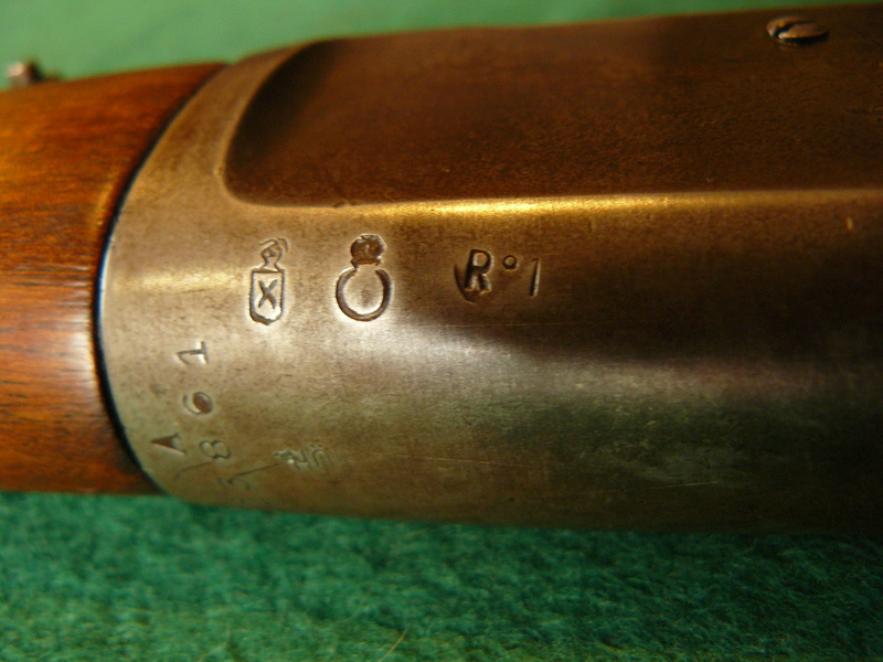 EL TIGRE P1080143