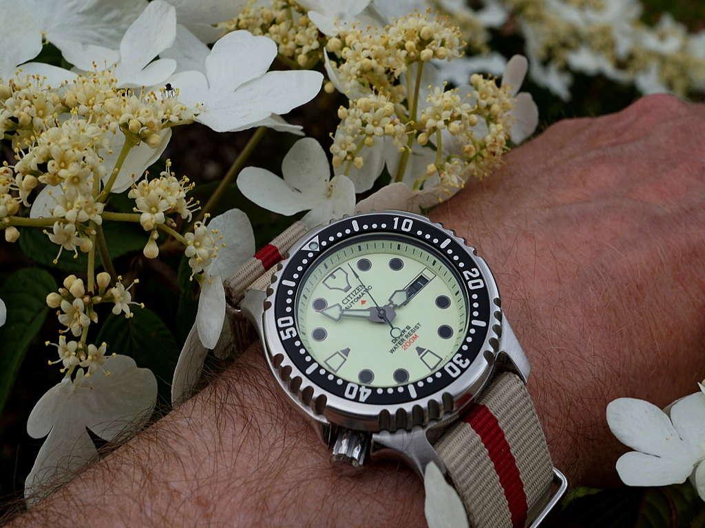 Votre montre du jour - Page 17 Rtdsc033