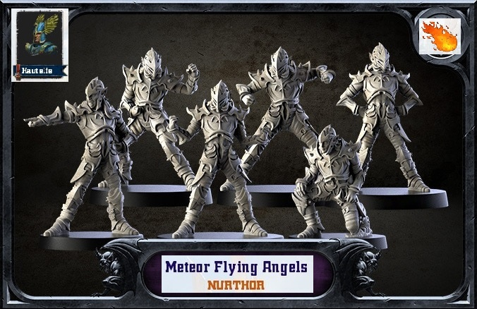 CR et RP: METEOR FLYING ANGELS [Hauts Elfes] - Page 3 Meteor12
