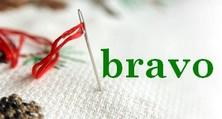 SALpin  2018, 2019 - nos broderies pour Noel - Page 2 Bravob11