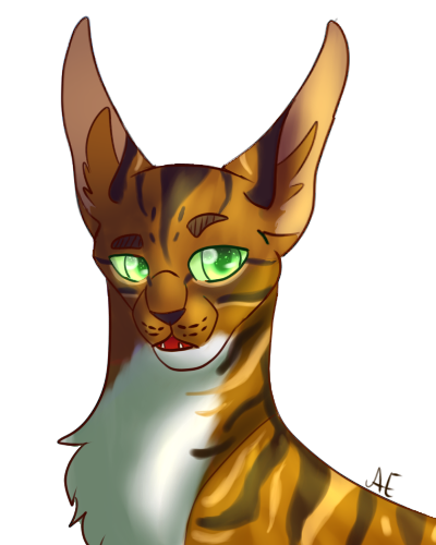 Headshots - Zeichenservice by Fate Headsh10