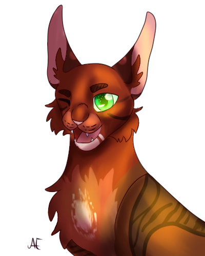 Headshots - Zeichenservice by Fate Rubinj13