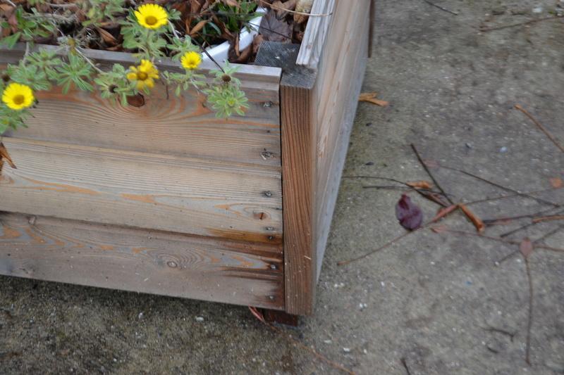 Bac a fleurs en bois Dsc_0020